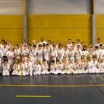 Groupe Shorinji ryu Alsace