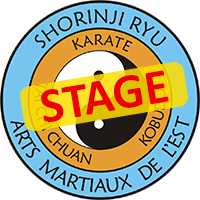 Logo AME Stage